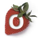 Florida Strawberry Festival Queen